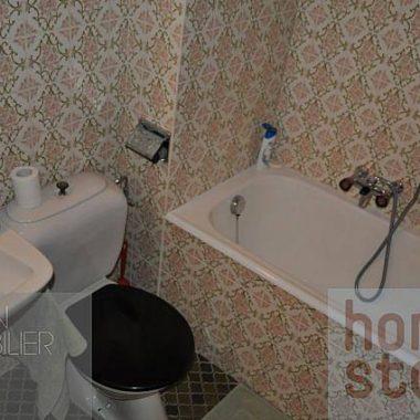04.09.2014 025_1980gryon-homestory