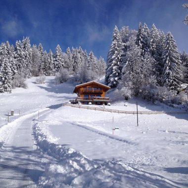 Chalet Creme Caramel Winter