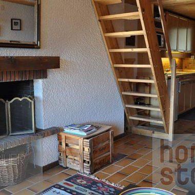 DSC_0752_1980gryon-homestory